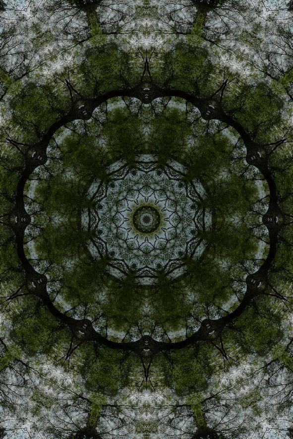APRIL 8 14 001 secret garden planet 5