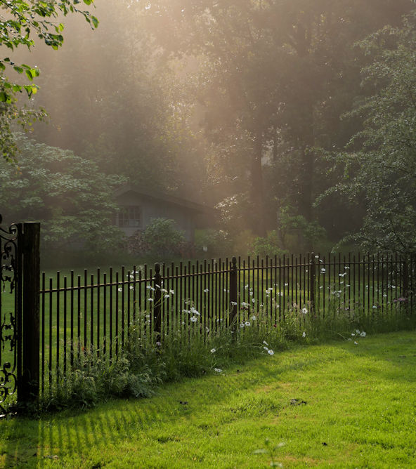Mystic Garden ~ magically untamed