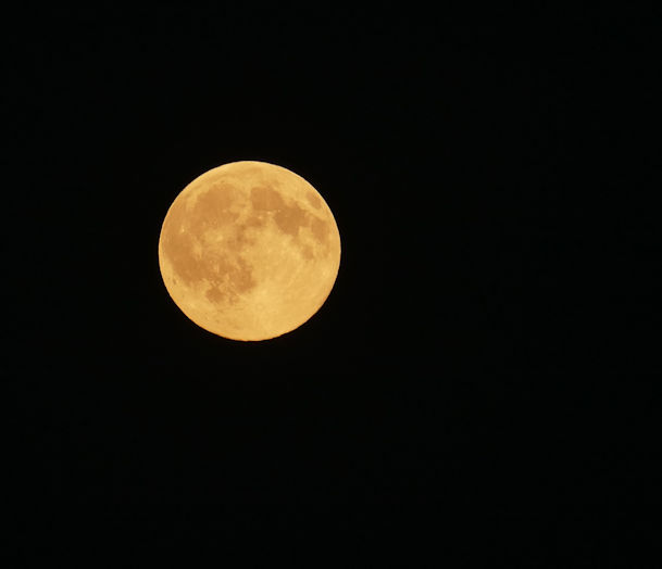 Tonight's Golden Hay Moon ~ mesmerising